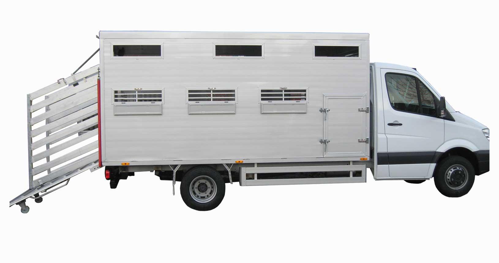 Viehtransporter LKW Multifunktional Rinder Schweine Schafe