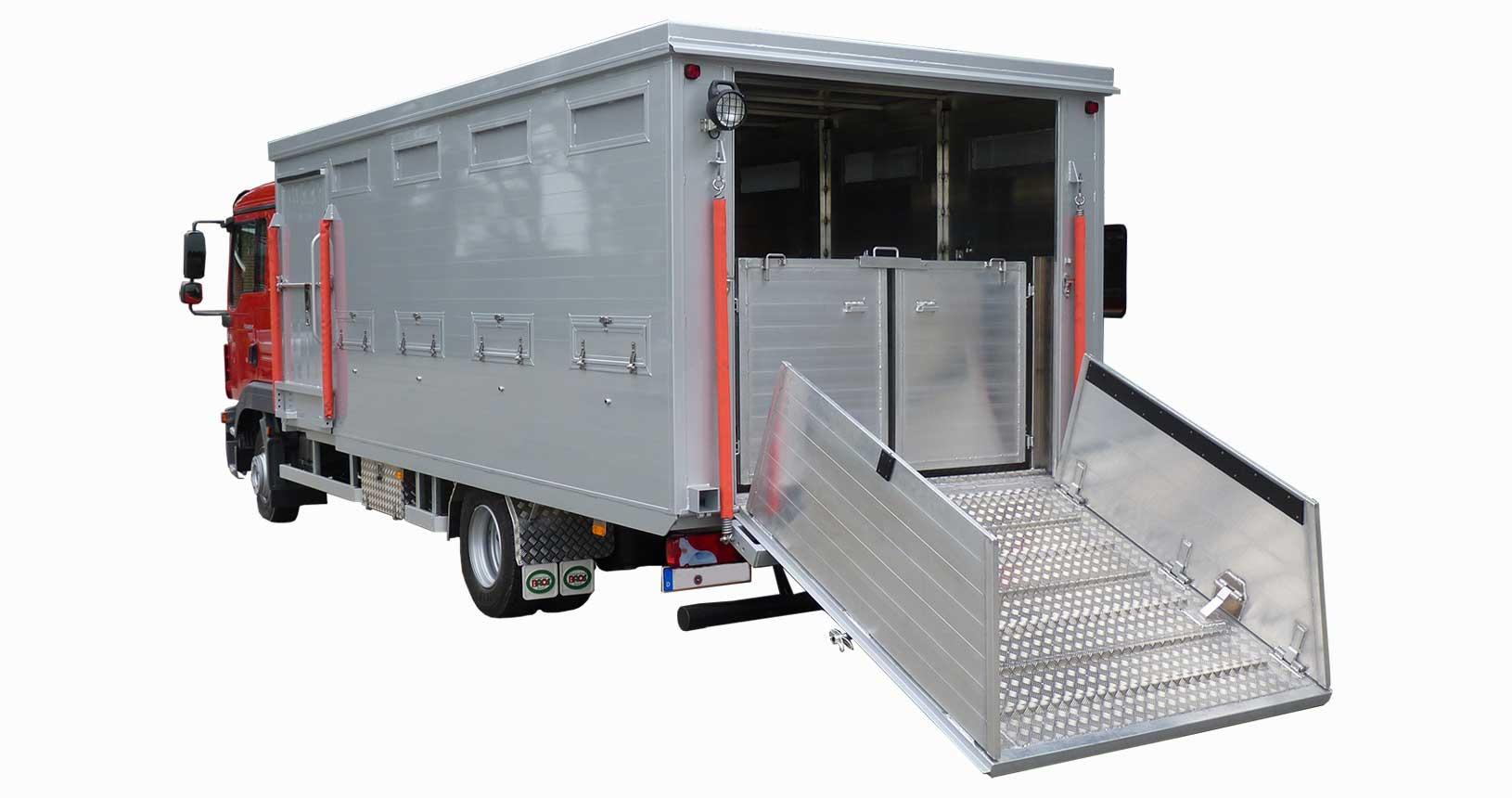 Viehtransporter LKW Rinder Kälber